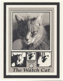 Watch Cat Note Card