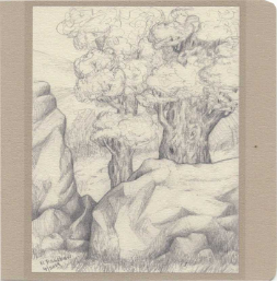 Rocky Tree note card